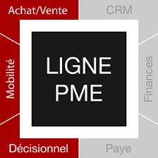 L'attribut alt de cette image est vide, son nom de fichier est images-ligne-PME.png.